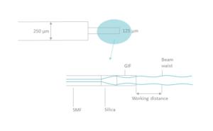 Lensed fiber schema