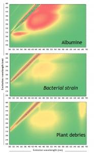 Fluorescence Excitation-Emission Matrix of complex model compounds