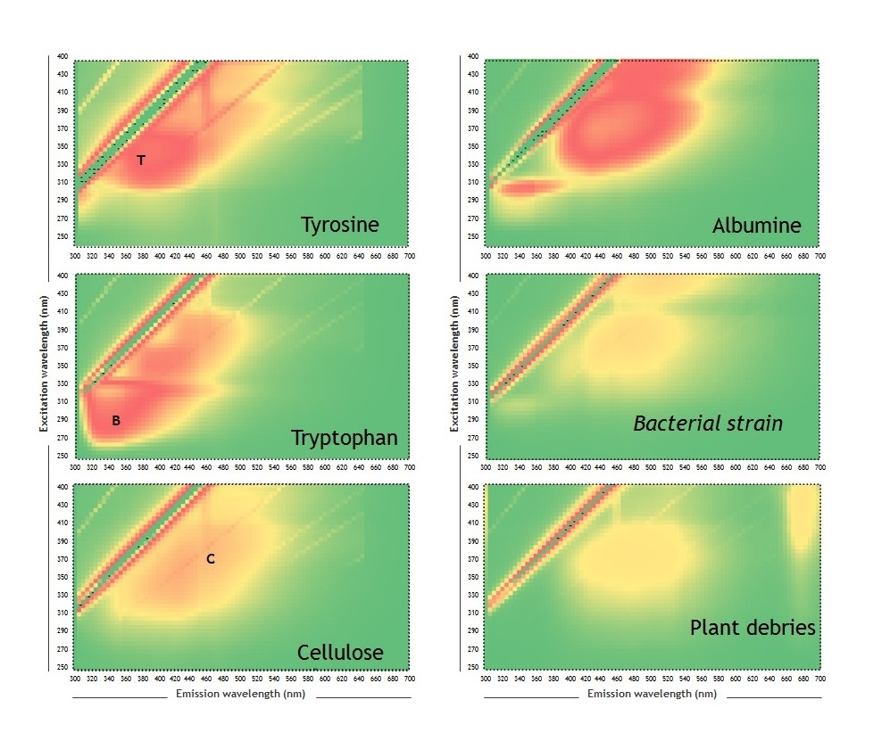 Fluorescence excitation-emission matrix of simple and complex model coumpounds
